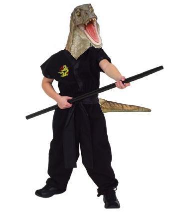 Ninja Velociraptor